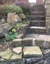 Front steps next to Shrub and Herb garden