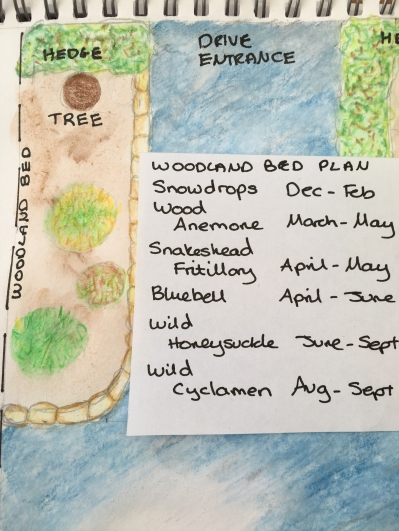 Woodland Bed Plan and shopping list. I should have flowers for 9 months.