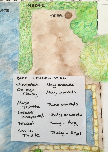 Bird garden plan and shopping list