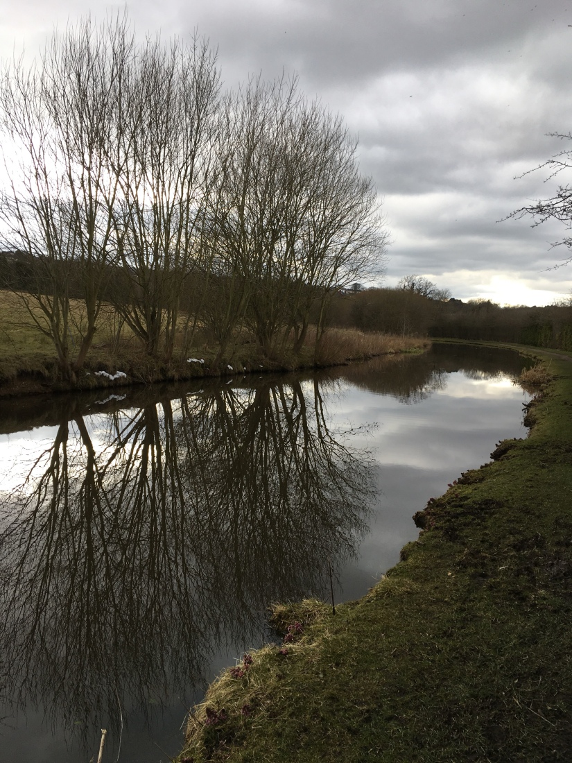 Reflections in the Canal