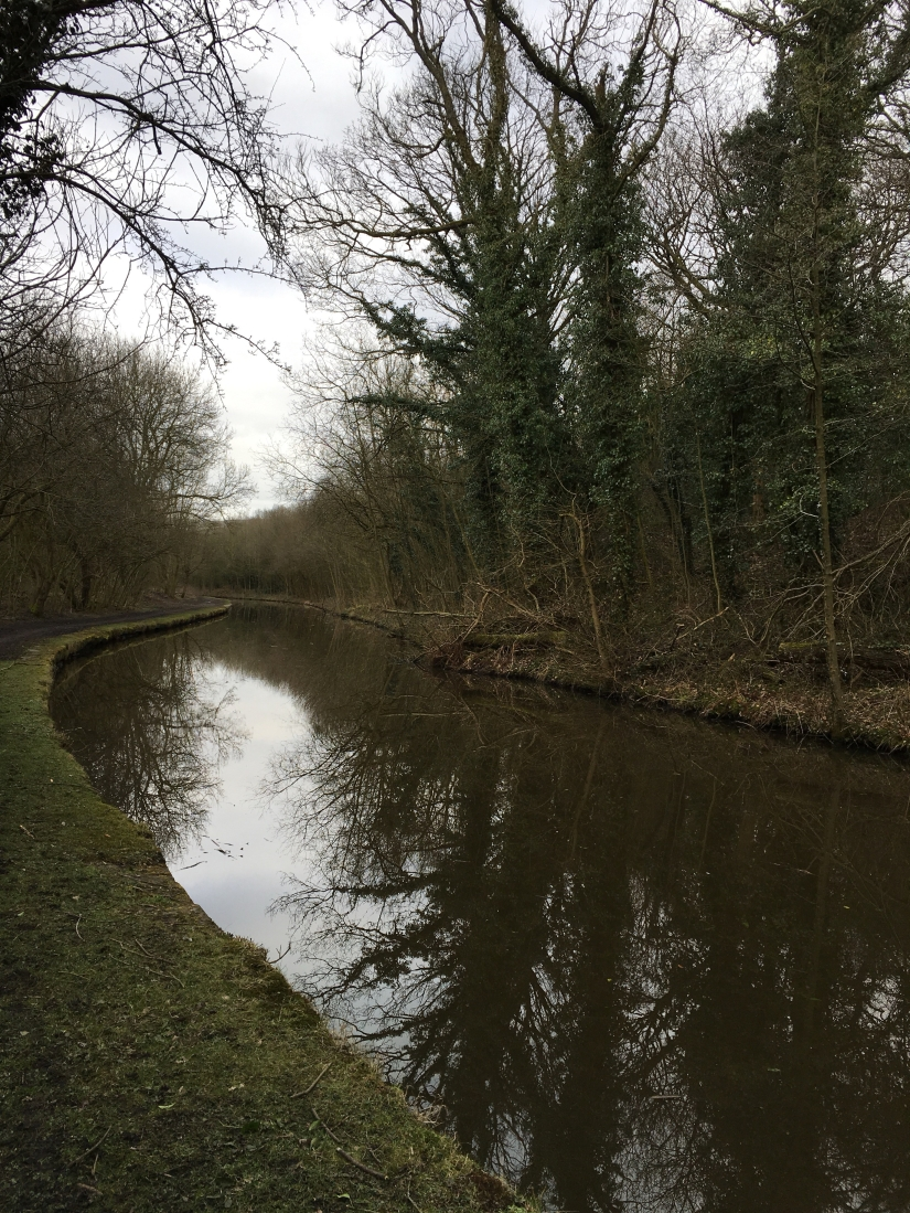 Canal in Disley