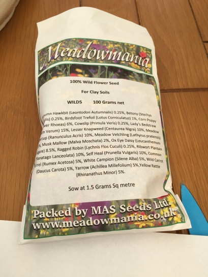 Wildflower meadow seed for clay soil