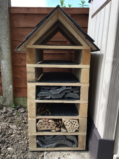 Beautiful Bug Hotel by Roger